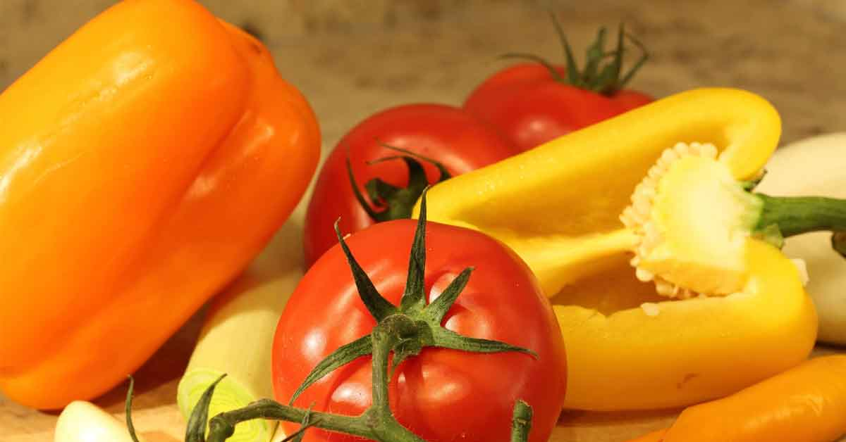 common diseases of tomatoes pepper eggplant potato