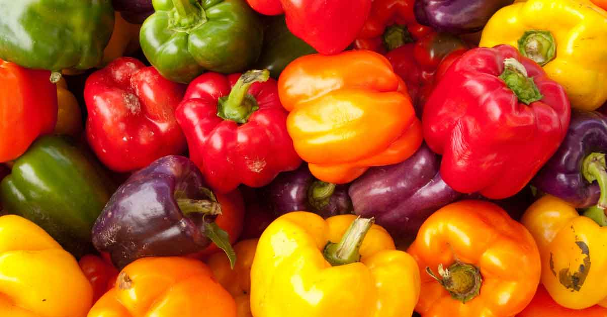 How To Plant Grow And Harvest Bell Peppers
