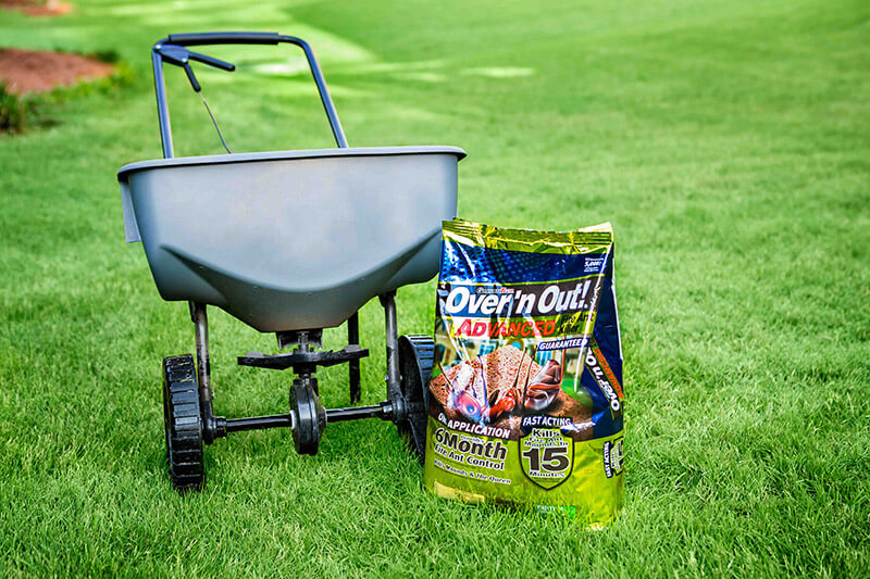 How To Kill And Prevent Fire Ants In Your Lawn