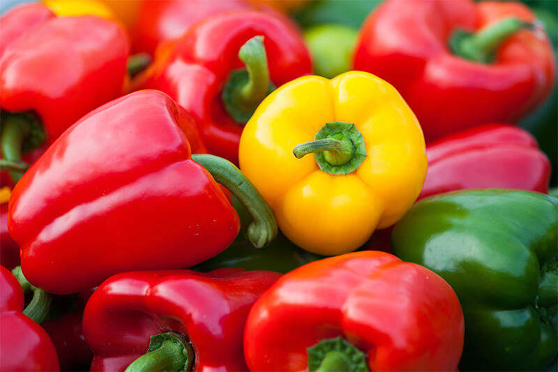 Bell peppers start out green, but they mature to red, orange, yellow, purple and even chocolate brown.